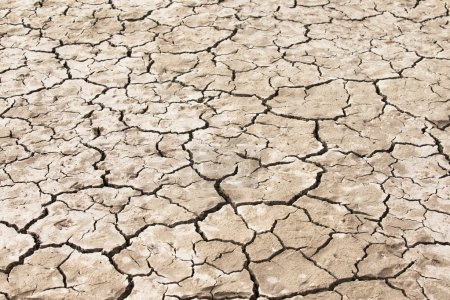 Cracked soil background