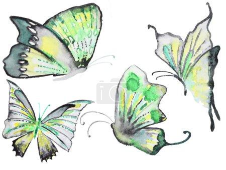Colección de mariposas dibujadas a mano