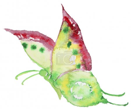 Photo pour Aquarelle abstraite à la main tiré colorfyl papillon. Peint à la main papillon aquarelle en Hires. Parfait pour les invitations de mariage, cartes de voeux, citations, articles, affiches et logo. - image libre de droit