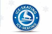 Skating signsport badge