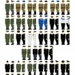 Uniforms and insignia of soldiers and officers of ...