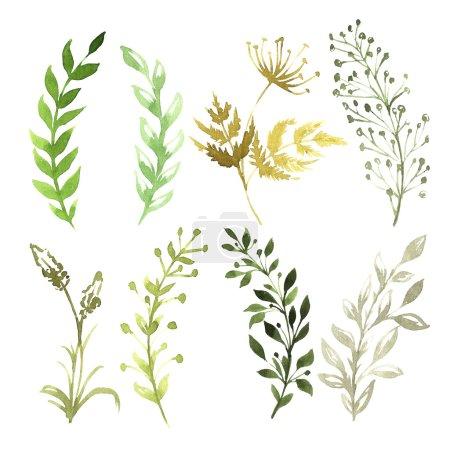 Photo pour Ensemble de fleurs peintes à l'aquarelle sur papier blanc - image libre de droit
