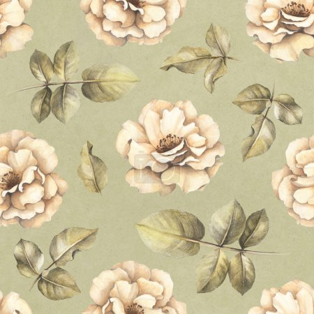 Seamless pattern with drawings of rose flowers