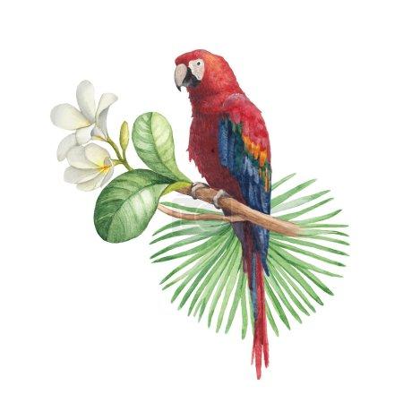 Photo pour Illustration aquarelle de fleurs tropicales et perroquet - image libre de droit