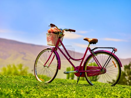 Photo for City bicycle with flower basket on green grass aganist blue sky. No people. - Royalty Free Image