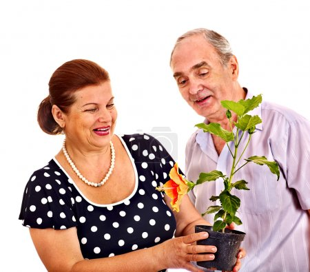 Old couple holding flower.