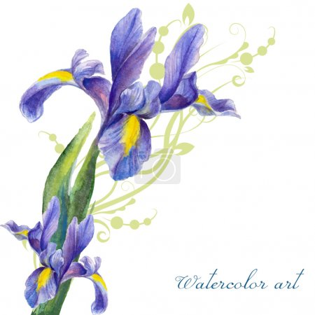 Illustration for Iris, painted watercolor on a background of abstract vegetation - Royalty Free Image