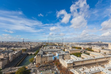 Paris seen from the top of Notre Dame