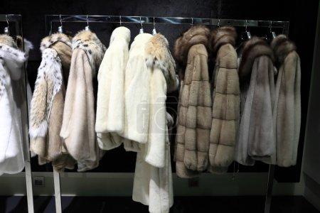 Photo pour Manteaux de fourrure sur les cintres à un magasin - image libre de droit