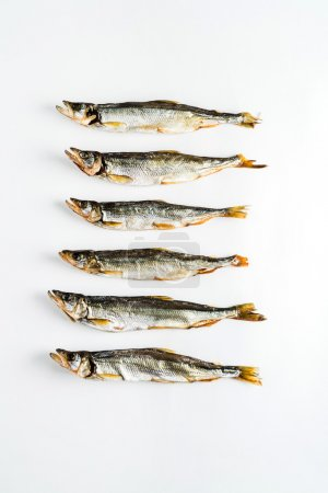 dry fishes on white