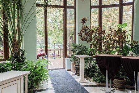 Photo pour Orangerie verte avec des plantes au hall public - image libre de droit