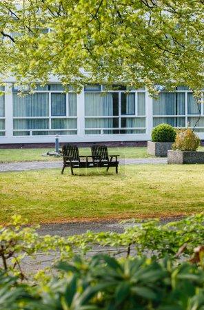 Photo pour Banc de jardin printanier avec arbres et l'herbe - image libre de droit