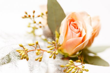 Nice flowers and rose