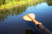 Paddle in the water closeup