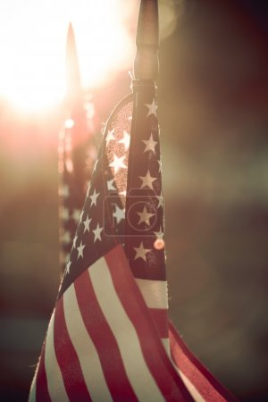 Photo for American flag on green background - Royalty Free Image