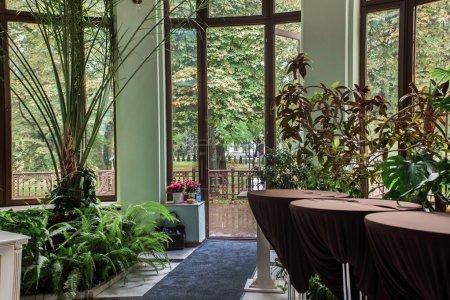 Photo pour Intérieur d'élégance du hall avec plantes vertes et les fenêtres panoramiques - image libre de droit
