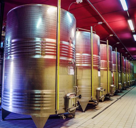 Reservoirs for fermentation of wine