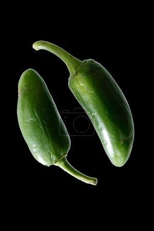 hot halapenjo peppers