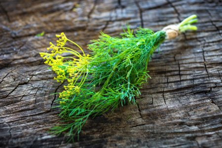 Photo for Banch of fresh, green dill on wooden background, close-up - Royalty Free Image
