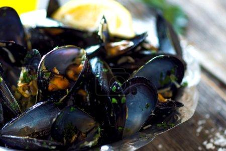 Photo pour Pile de moules noires bouillies, ouvertes gros plan - image libre de droit