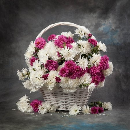 Chrysanthemum flowers in basket