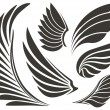 Set of five wings. Vector illustration...