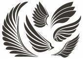 Set of five wings Vector illustration