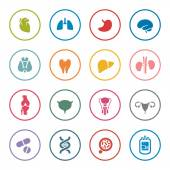 Human organs icon setcolorful vector illustration