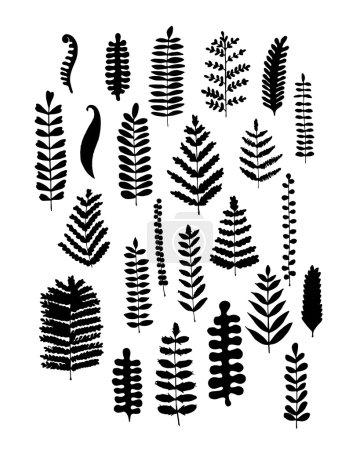 Leaf set, sketch for your design