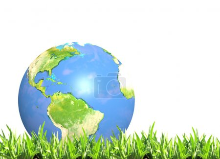 Summer green grass and Earth