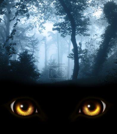 Photo pour Dark series - un regard des ténèbres - image libre de droit