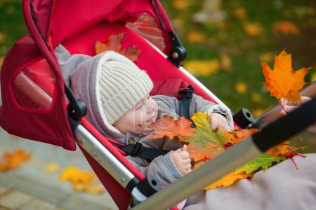 Baby boy in stroller playing with autumn leaves