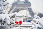 Rare snowy day in Paris