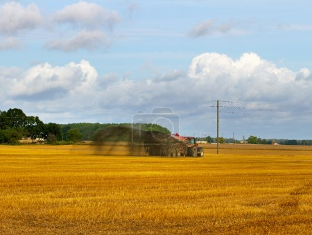Photo for Tractor with  liquid manure on the field. - Royalty Free Image