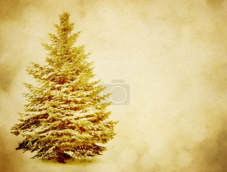Tree on grunge background