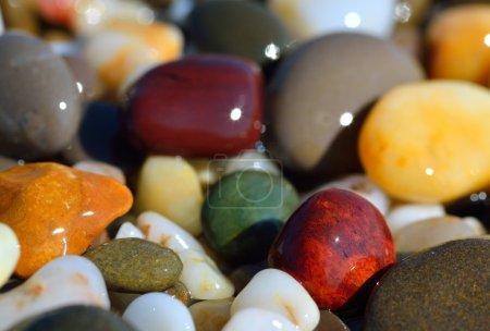 Photo pour Galets multicolores humides sur la plage - image libre de droit