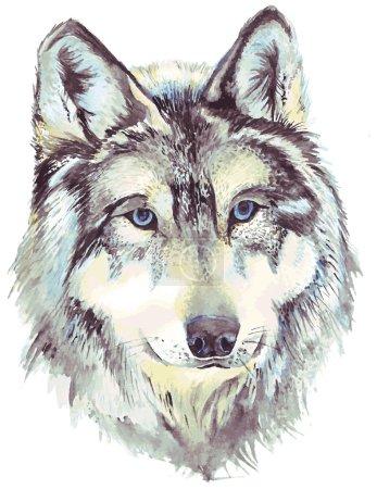 Illustration pour Profil de tête de loup. Dessin aquarelle au format vectoriel - image libre de droit