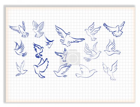Concept of love or peace. Set of white vector doves.