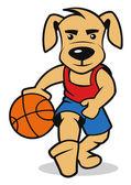 Pes hrát basketbal