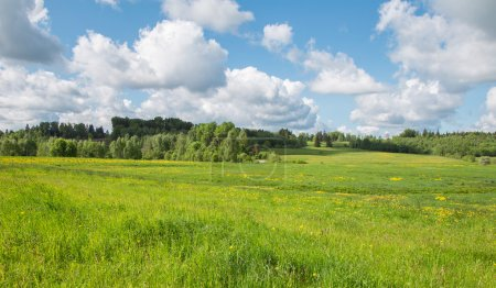 Photo for Summer landscape with blue sky and green fields - Royalty Free Image