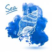 Sea shell on a watercolor background Original hand drawn illustration