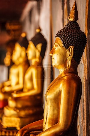 Gold sitting Buddha statues in Thailand