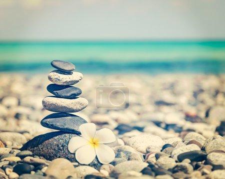 Photo pour Zen méditation spa détente fond - vintage effet rétro filtré hipster style image de pierres équilibrées pile avec frangipani plumeria fleur près de la plage de la mer - image libre de droit