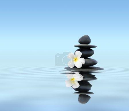 Photo pour Concept de spa zen fond - pierres de massage zen avec fleur de plumeria frangipani dans la réflexion de l'eau - image libre de droit