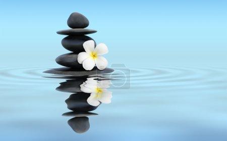 Photo pour Bannière panoramique du concept de spa zen - Pierres de massage zen avec fleur de plumeria frangipani dans la réflexion de l'eau - image libre de droit