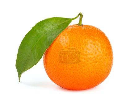 Photo pour Orange mandarine avec feuilles isolé sur fond blanc - image libre de droit