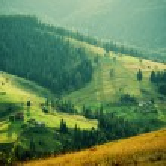 Carpathian mountains summer  landscape at sunset w...