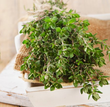 Photo for Fresh herbs. Thyme and oregano in a white box. Selective focus - Royalty Free Image