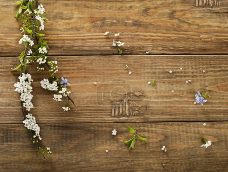 Spring flowers on wooden table