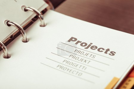 The Projects organizer